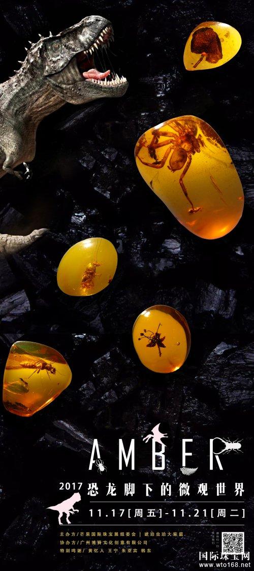 探秘·时光宝盒——虫珀