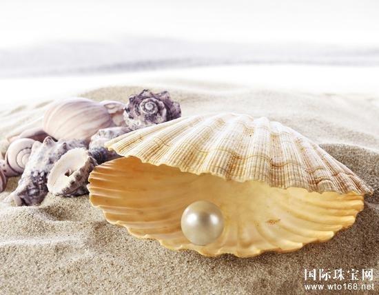 不同产地的珍珠特征用途大不相同