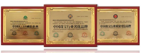 中国金楼荣誉证书